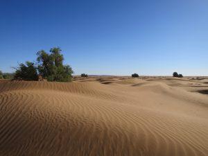 marokko-reise-wueste