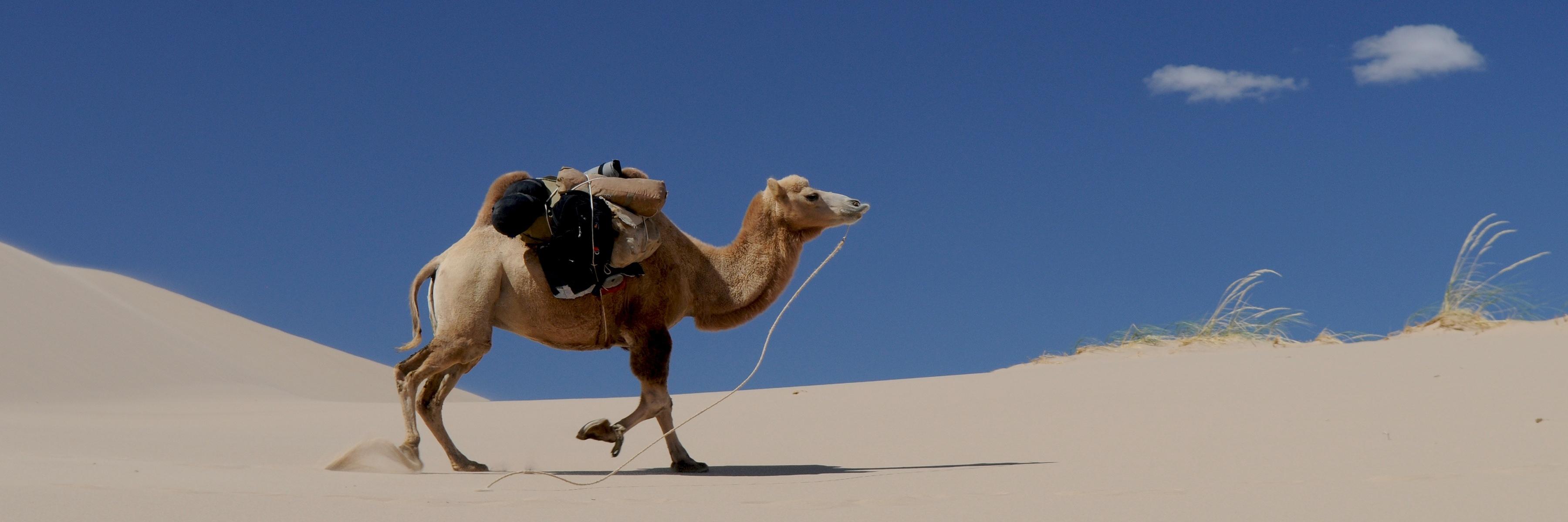 marokko-wetter