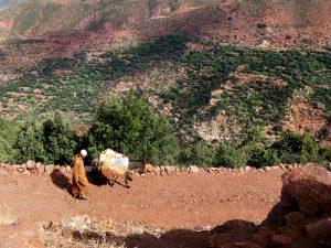 marokko-trekking-farbe